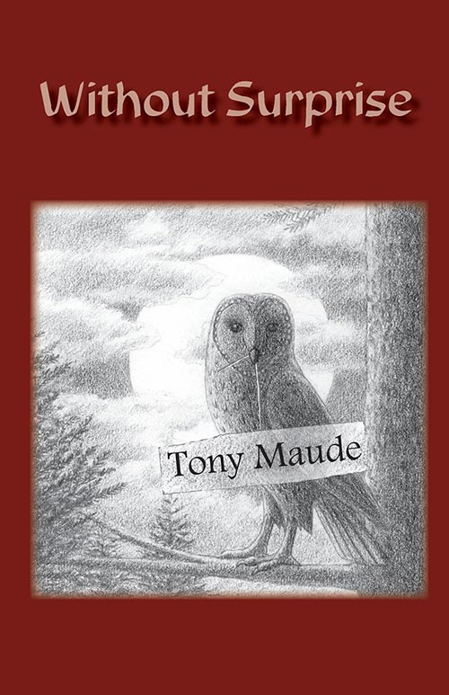 Without Surprise by Tony Maude